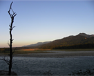 A landscape shot of Manas National Park