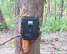 A typical camera trap