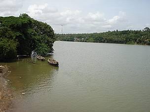 © River Research Centre, Kerala