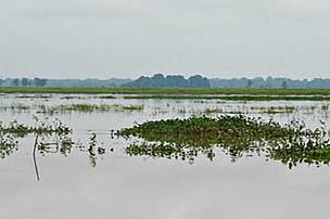 Karbi Anglong landscape