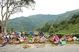 © Dipankar Ghose/WWF-India