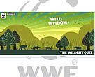 Report on Wild Wisdom National Quiz 2011