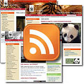 Web feeds are an easy way for you to keep updated automatically on websites you like / ©: WWF