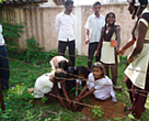 Students planting saplings at the Swami Vivekananda Nature Club, Indri