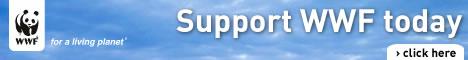 Support WWF-India / ©: WWF