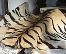 Seized tiger  and other endangered animal skins