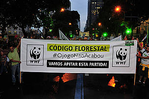 WWF protesting against the Brazilian Forest Code at the People's march